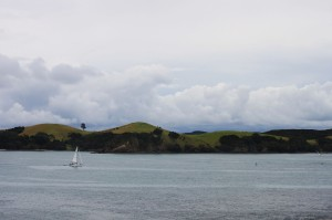 82 - North Island, NZ